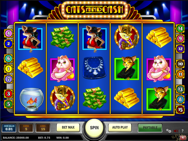 cats & cash screenshot
