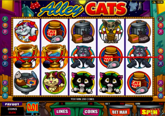 alley cats screenshot